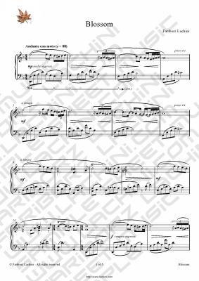 Blossom 音乐页