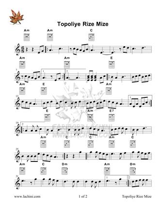 Topoliye Rize Mize Spartiti musicali